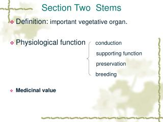 Section Two  Stems