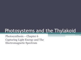 Photosystems and the Thylakoid