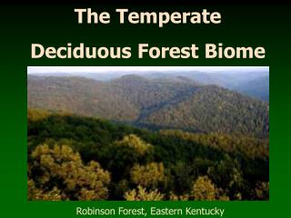 The Temperate Deciduous Forest Biome