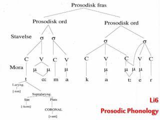 Li6  Prosodic Phonology
