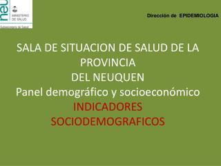 SALA DE SITUACION DE SALUD DE LA PROVINCIA  DEL NEUQUEN Panel demogr fico y socioecon mico INDICADORES SOCIODEMOGRAFICOS
