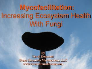 Mycofacilitation: Increasing Ecosystem Health With Fungi