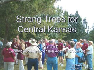 Strong Trees for  Central Kansas  by Bob Neier Sedgwick County Extension Agent, Horticulture