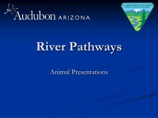 River Pathways