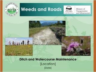 Ditch and Watercourse Maintenance [Location] [Date]