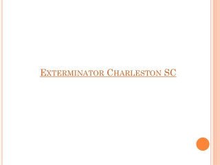 Exterminator Charleston SC