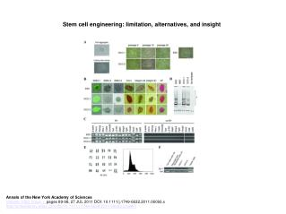 Stem cell engineering: limitation, alternatives, and insight