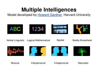Multiple Intelligences Model developed by Howard Gardner, Harvard University