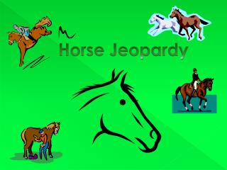 Horse Jeopardy