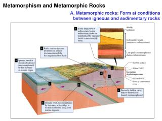 Metamorphism and Metamorphic Rocks