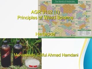 Herbicide Mixtures