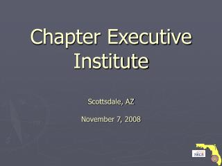 Chapter Executive  Institute Scottsdale, AZ November 7, 2008