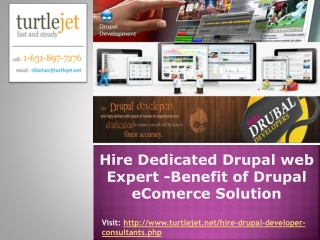 Hire Dedicated Drupal web Expert -Benefit of Drupal eComerce