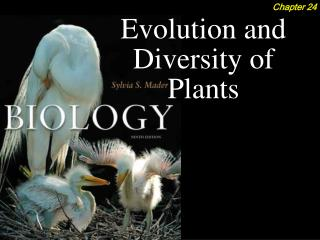 Evolution and Diversity of Plants