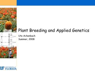 Plant Breeding and Applied Genetics