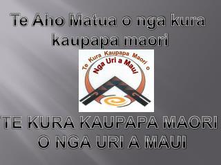 Te Aho Matua o nga kura  kaupapa maori