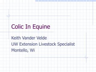Colic In Equine