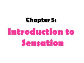 Chapter 5:  Introduction to Sensation
