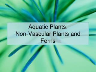 Aquatic Plants: Non-Vascular Plants and Ferns