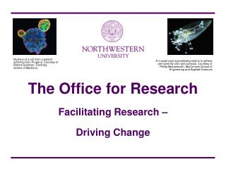 The Office for Research   Facilitating Research    Driving Change