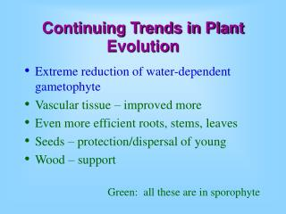 Continuing Trends in Plant Evolution