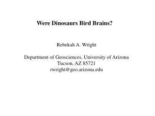 Were Dinosaurs Bird Brains