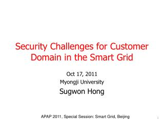 Security Challenges for Customer Domain in the Smart Grid