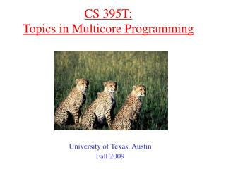 CS 395T: Topics in Multicore Programming