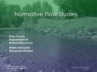 Normative Flow Studies