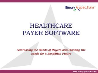 Healthcare Payer Software Solutions