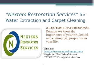 Wet Basement Waterproofing and Carpet Cleaning USA