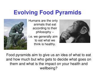 Evolving Food Pyramids