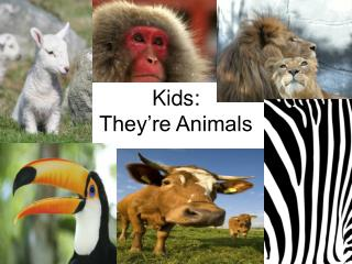 Kids: They re Animals