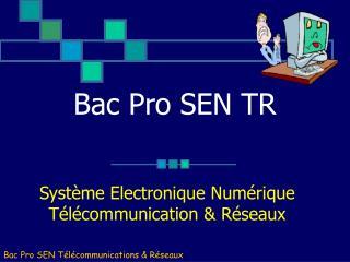 Bac Pro SEN TR