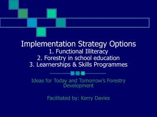 Implementation Strategy Options 1. Functional Illiteracy 2. Forestry in school education  3. Learnerships  Skills Progra