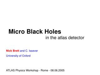Micro Black Holes