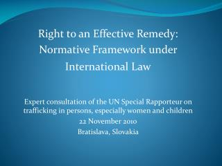 Right to an Effective Remedy:  Normative Framework under International Law    Expert consultation of the UN Special Rapp