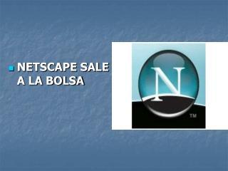 NETSCAPE SALE A LA BOLSA