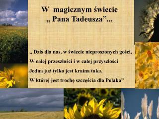 W  magicznym swiecie    Pana Tadeusza ...