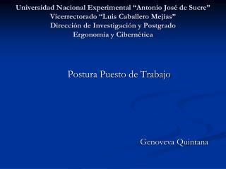 Universidad Nacional Experimental  Antonio Jos  de Sucre  Vicerrectorado  Luis Caballero Mej as  Direcci n de Investigac