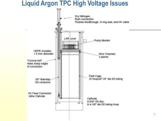 Liquid Argon TPC High Voltage Issues