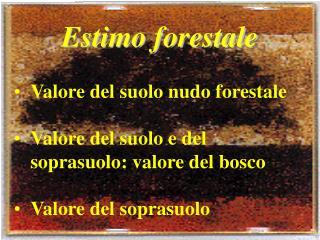 Estimo forestale