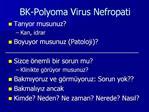 BK-Polyoma Virus Nefropati