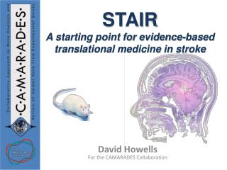STAIR A starting point for evidence-based translational medicine in stroke