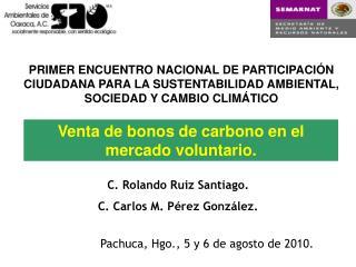 Venta de bonos de carbono en el mercado voluntario.