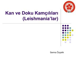 Kan ve Doku Kam ililari Leishmania lar