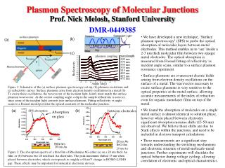 Plasmon Spectroscopy of Molecular Junctions