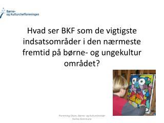 Hvad ser BKF som de vigtigste indsatsomr der i den n rmeste fremtid p  b rne- og ungekultur omr det