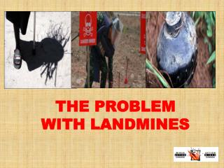 THE PROBLEM WITH LANDMINES