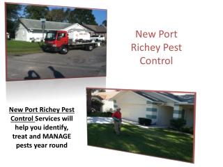 New Port Richey Pest Control